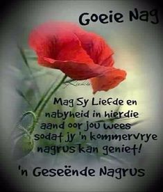 Evening Greetings, Afrikaanse Quotes, Good Night Blessings, Goeie Nag, Special Quotes, Good Night Quotes, Sleep Tight, Trust God, Birthday Wishes