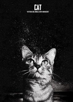 Kittens STIPPLE EFFECT