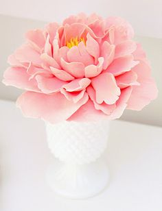 Pretty bloom