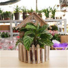 hanging plant basket decor garden supplies flower pot wooden planter box nursery decorative wood succulents pots