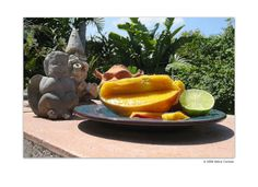Waiting for Mango Salsa by Debra Cortese