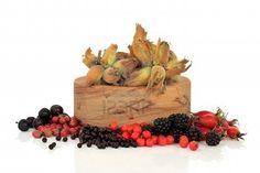 NTS Dumfries and Galloway Countryside Team Sloe Berries, Rowan, Countryside, Herbs, Autumn, Blackberry, Wildlife, October, Food