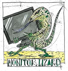 Monitor Lizard illustration from Greams