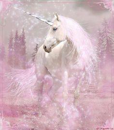 The Unicorn Hunt: Photo Unicorn And Fairies, Unicorn Fantasy, Real Unicorn, Unicorn Horse, Unicorns And Mermaids, Unicorn Art, Fantasy Art, Magical Unicorn, Beautiful Unicorn