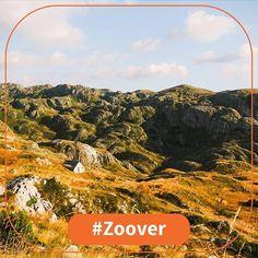 Schitterend uitzicht in Montenegro foto door @miss.worldtraveller. Gebruik ook #zoover bij je vakantiefoto voor een plek in onze feed. #stayandwander #exploretheglobe #theglobewanderer #mytinyatlas #welivetoexplore #adventure #adventuretime #traveladventures #shetravels #sheisnotlost #globetrotter #herwanderfullife #worldtraveller #wanderlust #worlderlust #travelbook #backpackerslife #ourlonelyplanet #balkan #montenegro #visitmontenegro #durmitornationalpark #blacklakemontenegro #roadtrip… Montenegro, Adventure Time, Camping, Mountains, Nature, Instagram Posts, Travel, Campsite, Naturaleza