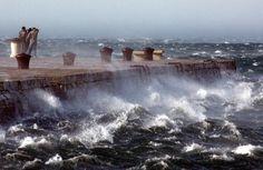 Trieste e il suo vento