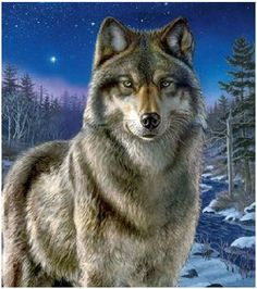 Wolf ~ Cross Stitch Pattern