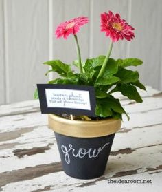 9 Kid-Friendly Gifts to Make for Teacher's Back to School: Potted Plant Gift