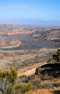 Colorado River and the Grand Mesa from the Rabbits Ear trail, Black Ridge Canyons Wilderness, Colorado