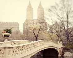 """sixpenceeeblog: """" I took one of my most photogenic picture on this bridge in Central Park, NY. Photo by EyePoetryPhotography """""""