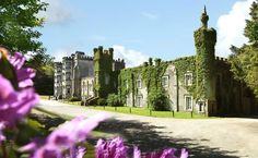 Ballyseede Castle Hotel in Tralee, County Kerry, Ireland. Quality Castle Accommodation in Ireland at Ballyseede Castle. Book a castle stay at Ballyseede Castle. Castle Hotels In Ireland, Castles In Ireland, Ireland Vacation, Ireland Travel, Hotel San Jose, Dublin, Parks, Stay In A Castle, Night City