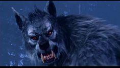 The werewolf in Van Helsing (2004) movie