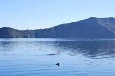 Lake Rotoiti Reviews - Rotorua, Rotorua District Attractions - TripAdvisor