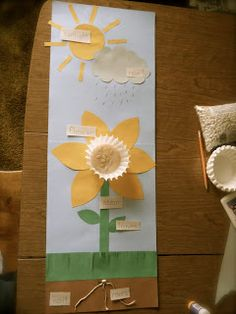 Plant Crafts, Plant Projects, Parts Of A Flower, Parts Of A Plant, Preschool Garden, Preschool Crafts, 1st Grade Crafts, Teaching Plants, Life Cycle Craft