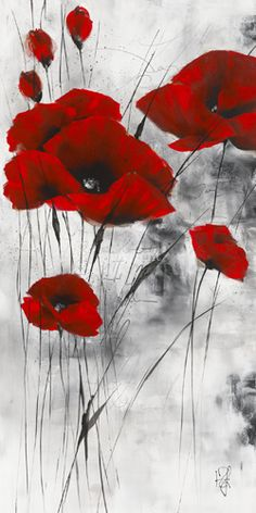 Poppies in red