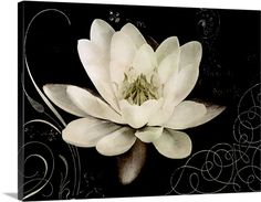 Amy Melious Premium Thick-Wrap Canvas Wall Art Print entitled Garden Journal IV, None Stretched Canvas Prints, Canvas Art Prints, Canvas Wall Art, Big Canvas, Framed Prints, Framed Wall, Flower Wall Decor, Floral Wall Art, Decoupage