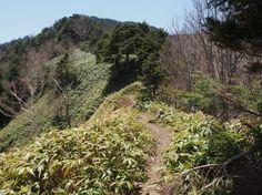 広河原登山口から恵那山|中央アルプス登山ルートガイド。Japan Alps mountain climbing route guide