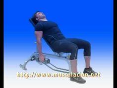 4.Curl de Biceps sentado en banco inclinado mancuernas