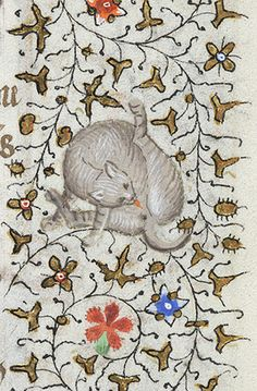 Cat Licking Itself | Book of Hours of Charlotte of Savoy, 1420  [Morgan Library]
