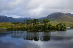 Connemarra Nation Park, County Galway, Ireland