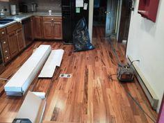 Lauzon Tigerwood Hardwood Flooring by Wagner Rug and Flooring