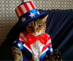 """Mr. Whiskers says """"Happy 4th of July!"""""""
