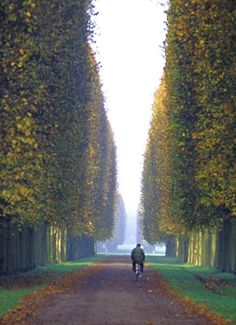 Versailles Palace Grounds. Great memories from my trip with my mom!