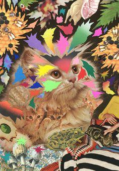 Awesome collage art. Hisham Akira Bharoocha.