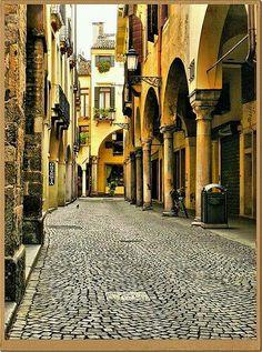 Erano incapaci di adattarsi all'umanità scostante di Padova
