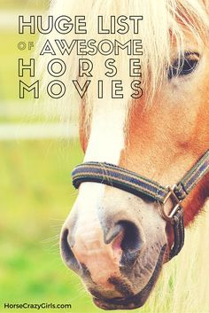 Our horse movie list shows all the horse movies we've found. Read and share your reviews!