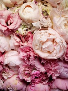 """Oh, how I love peonies. Even if it does mean """"shame"""" in the Victorian language of flowers. I much prefer the second definition;"""" Can't wait 'til ours bloom! My Flower, Fresh Flowers, Beautiful Flowers, Peony Flower, Pastel Flowers, Cactus Flower, Exotic Flowers, Pastel Colours, Bouquet Flowers"""
