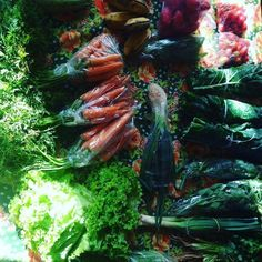 """Quando eu falo que o Matias é um bebê que consome 80% de produtos orgânicos a prova está aí! """"Comida sustentável"""" se você não conhece acesse o Facebook na página deles você pode encomendar kits de comida de qualidade vegana. Entra lá! Cardápio incrível #comida #comidasustentável #sustentavel #sustentabilidade #kitdecomidacongelada #kitdecomida #vegano #organico #feiradaaguabranca #feira #saude #comidaboa #saudavel #matiasumprincipe #maeatual #matias by maeatualoficial http://ift.tt/1Wk7hd0"""