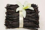 Premium (Medium) Vanilla Beans--1 Pound  IndriVanilla.com