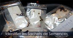 Identification des semences - Comment identifier un sachet de graines avant la réfrigération. INstructions : http://www.jardinage-quebec.com/guide/stratification-des-graines/stratifier-semences-5.html
