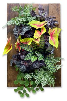 Vertical Gardening Systems - modern - indoor pots and planters - other metro - Urban Zeal Planters