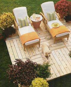 These are the garden patio chaise lounges of my dreams. Just add money, space, and a canopy umbrella. Le sigh.