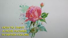 How to paint A Rose flower in water colors