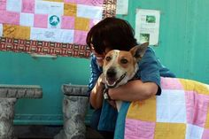 A sweet little homeless dog picked around her town for scraps of food to survive. Seeing as the headmaster of a nearby school found her pesky, They cruelly tried to bury her alive, until she was rescued and saved. Soon enough, she found a forever family and lived happily ever after.