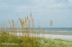 Things to do in Hilton Head Island SC - Carolina Coast Activities