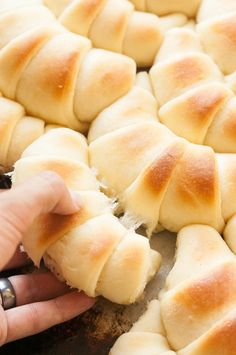 PERFECT Crescent Dinner Rolls. You'll never need to search again! The Kitchen McCabe - Live Colorfully. Eat Beautifully.