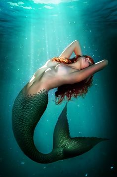 Mermaid from: thesensualstarfish