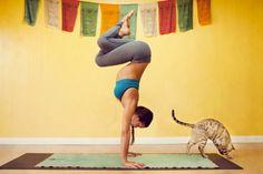Amazing yoga photo
