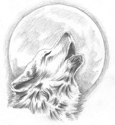 Drawings of a wolf wolf sketch drawings hauling at the moon inspirational howling wolf tattoo change . drawings of a wolf drawing wolf digital art Art Drawings Sketches, Animal Drawings, Easy Drawings, Tattoo Drawings, Sketch Tattoo, Wolf Drawings, Drawing Animals, Animal Sketches, Howling Wolf Tattoo