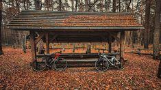 45/365 To nie byla łatwa decyzja.  wiedząc ze jest wmordewind na zewnątrz ujemna odczuwalna temperatura i ogólnie brak słońca nie zachęcały do wyjścia z małej domowej strefy komfortu. Ale przemoglem.  dzięki @uziel75       #bobiko365 #365project #365 #365photochallenge #366project #365days #autumn #project365 #365challenge  #oneplus7t #leaf #tree #wmordewind  #cycling #roadcycling #roadbike #szosa #cyclingphotos #cyclingpics #stravaphoto #strava #proveit #rower  #sundaycycling  #moodygrams… 365days, Cabin, House Styles, Instagram, Home Decor, Decoration Home, Room Decor, Cabins, Cottage