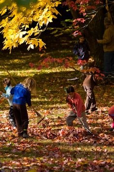 Kids raking leaves. Easy volunteer project to assist neighbors.  Sneak out early in the morning for a welcome surprise. #volunteer