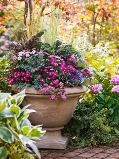 planter-mum-variety-e17ca002 Container Plants, Container Gardening, Organic Gardening, Gardening Tips, Gardening Books, Vegetable Gardening, Potted Mums, Potted Plants, Garden Plants