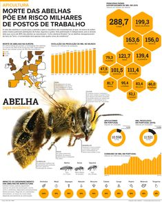 Death of bees threatens thousands of jobs