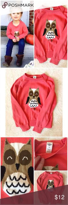 Owl Sweater New listing! Such a sweet little sweater- one of my favorites! Great condition! Osh Kosh Shirts & Tops Sweaters