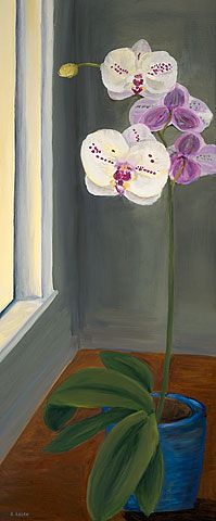 Morning Light - oil on canvas - 30x12 - white and pink orchid in a window - www.rosehagan.com - original painting, giclee prints, note card