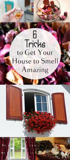 6 Tricks to Get Your House to Smell Amazing. Cleaning, cleaning tips, home cleaning, cleaning hacks, bathroom, home décor, organization, home organization, DIY, cleaning, do it yourself.